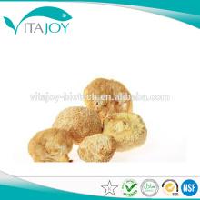 Los mejores productos de la fábrica de GMP Extracto de la seta de la cabeza del mono de la alta calidad / extracto del Erinaceus del Hericium 30% polisacárido