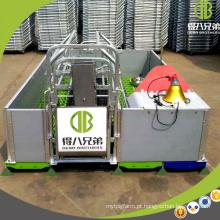 Venda quente que escala o equipamento personalizado porco da caixa para gaiolas do porco para a venda