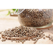 Bulk Conventional Vegan Protein Hemp Seed