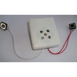 Sound Box for Stuffed Toy, Sound Module, Voice Module