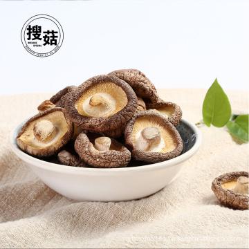 Seta de shiitake secada china a granel al por mayor