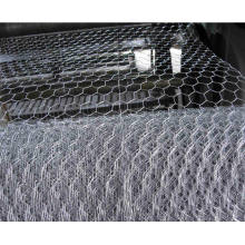 Galvanized Hexagonal Chicken Wire Mesh for Plastering
