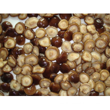 Canned Shiitake Marinated Whole with High Quality