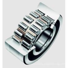 Rolamento de rolos cilíndricos de dupla linha de vedação duplo SL04 260PP