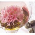 Carnation (thé artistique, thé fleurissant, thé artificiel)