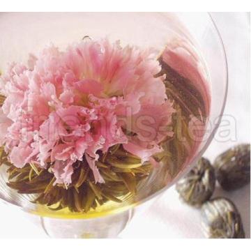 Nelke (künstlerische Tee, Blooming Tea, künstliche Tee)