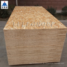1220X2440mm OSB Board / WBP Kleber OSB Board