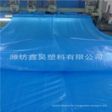 Heavy Duty 200 GSM azul impermeable lona del PE
