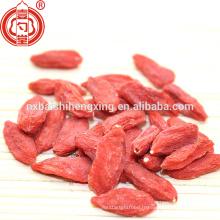 Ningxia séché goji baie séchée médecine traditionnelle brevetée avec fonction herb-médicinale