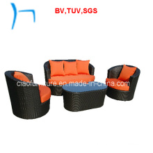 F- Outdoor Furniture Garden Furniture Rattan Sofa (6422)