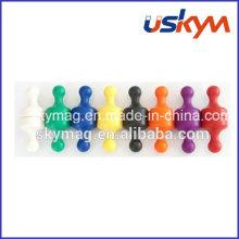 Neodymium Magnetic Push Pin for Sale Whiteboard Magnet