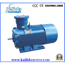 Yb2 Series Explosion-Proof Engine Approved CE (YB2-315L-4)
