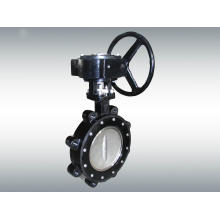 APC High Performance Lug Type Butterfly Valve with Gear Box