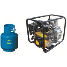 Pompe à eau au LPG de 2 po (WP20LPG)
