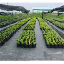 Preiswertes pp. Landwirtschaftliches gesponnenes Abdeckungs-Gewebe für Bodendecke