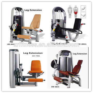 factory direct sales Seated Leg Extension fitness equipment/hot super gym equipment for promotion/China made sports equipment
