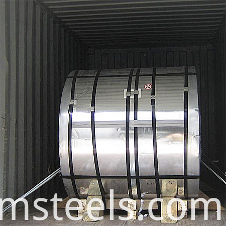painted steel coil