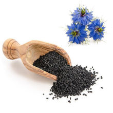 Extrait de Nigella Sativa/ Extrait de graines de cumin noir 5%