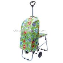 carro con silla de plegamiento