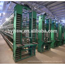 Alibaba suministro de equipos de cría para granja de pollos