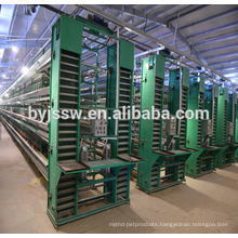 Alibaba Supply Rearing Equipment For Chicken Farm