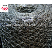 Hexagonal Wire Mesh (ISO 9001)