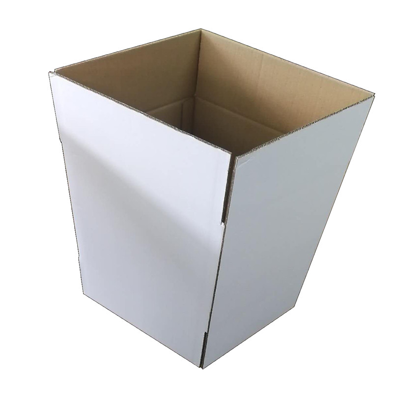 Export Packaging White Carton