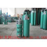 Vertical centrifugal deep well 250QJ water irrigation pump