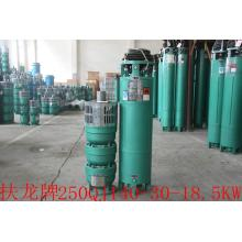 QJ well submersible motor water pump