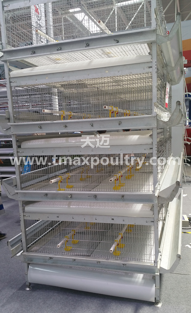 Broiler chicken cages detail