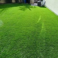 UV Resistance Long Service Life Best Fake Lawn