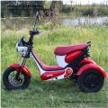 Three Wheel Electric Scooter   Eco-Friendly E-Bikes
