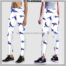 OEM Fabricant Custom Fitness Mesh Yoga Pants