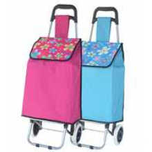 Groceries Trolley Rolling Shopping Carts (SP-522)