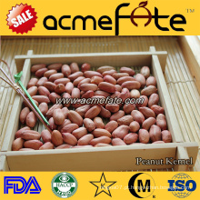 Pedaço de amendoim de pele vermelha orgânica 50/60