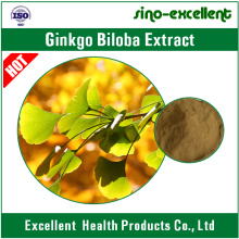 Ginkgo Biloba Extract EP 08 Grade
