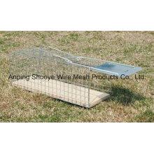 Cage de rongeurs de cage d'animal vivant pliable de Multi-Chasse