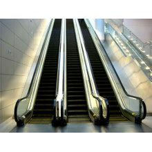 Isuzu Escalator