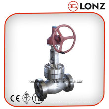 API Gear Operated Stainless Steel Flanged Globe Valve