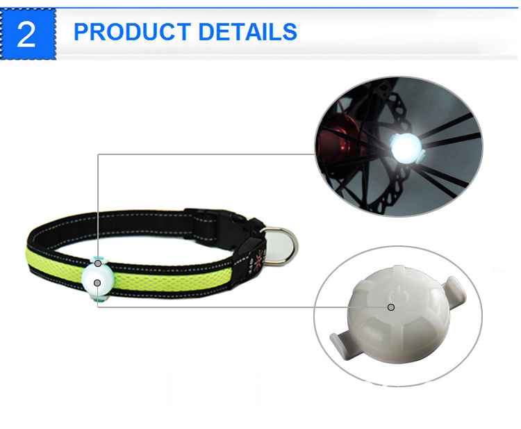 Led Pet Light
