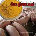 Золотисто-желтый кукурузный глютен 60% белка