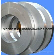 Bobine / plaque en acier inoxydable 304