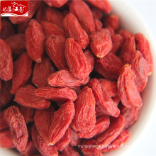 Wholesale new harvest top grade with best price organic goji berry