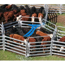 Высокая Quaility скота ярдов забор забор/корова/лошади/овцы