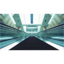 Paseo en movimiento interior con ancho de paso 600mm ~ 1000mm