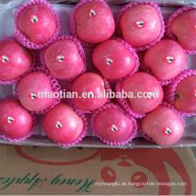 Preis für frischen Apfel aus Yantai China