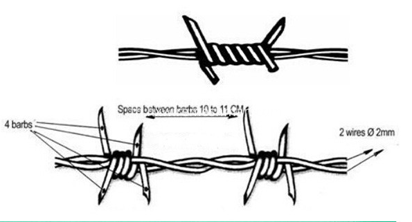 barbed wire drawing