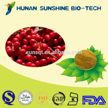 Sedative fructus schisandrae chinensis polvo de extracto de fruta / curado amnesia schisandra PE