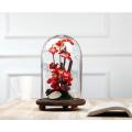 Fertigen Sie Qualitäts-Glasanzeige-Haube besonders an