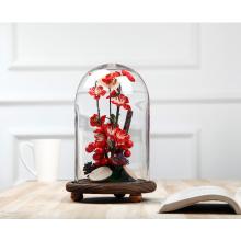 Personalizar la bóveda de la exhibición del vidrio de la alta calidad